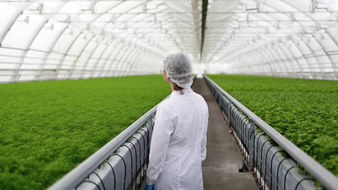 carrera de ingenieria agronomica umsa