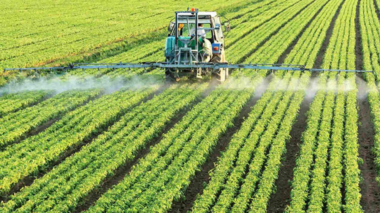 carrera de ingeniería en producción y comercialización agropecuaria umsa